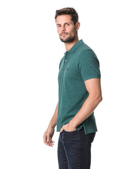 The Gunn Polo, PINE, hi-res