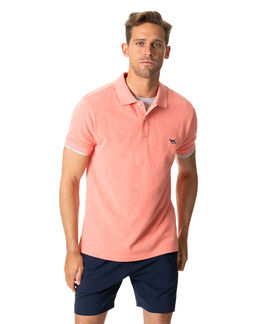 The Gunn Polo, SALMON, hi-res