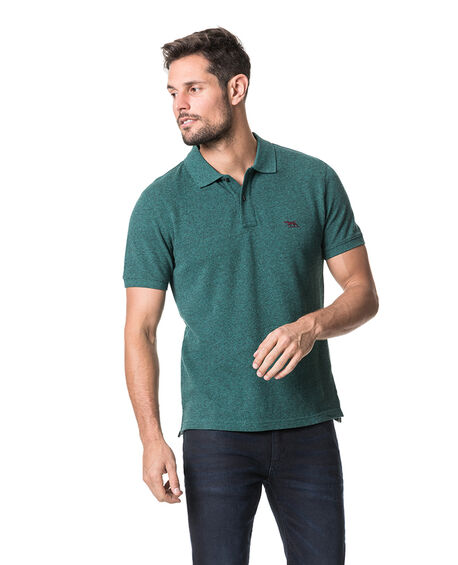 The Gunn Polo, PINE, hi-res