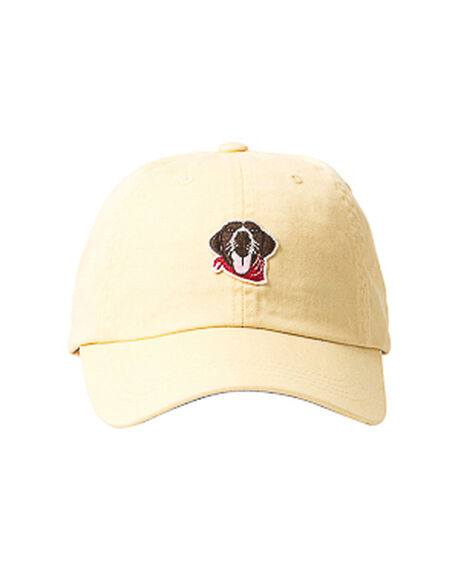 The Gunner Dog Cap, CANARY, hi-res