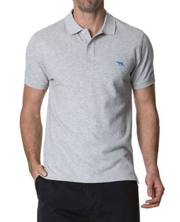 The Gunn Polo, ASH, hi-res