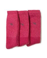 Gunner Three Pack Sock, DUSTY ROSE, hi-res