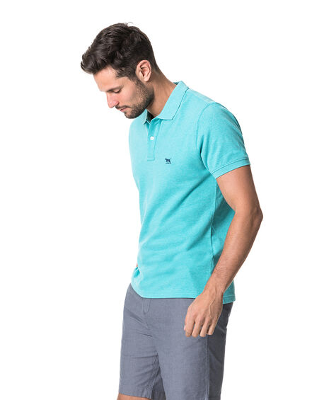 The Gunn Polo, AQUA, hi-res