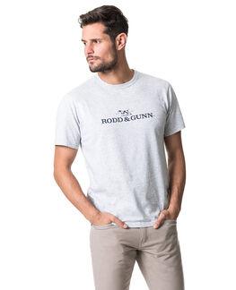 Logo T-Shirt, ASH, hi-res