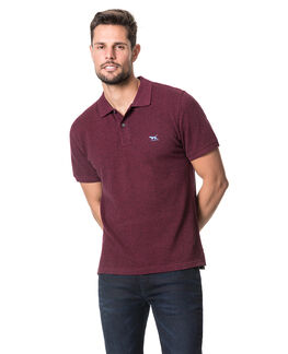 The Gunn Polo, GARNET, hi-res