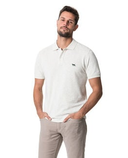The Gunn Polo, PUMICE, hi-res