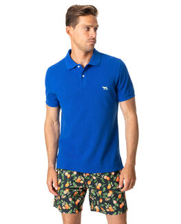 The Gunn Polo, COBALT, hi-res