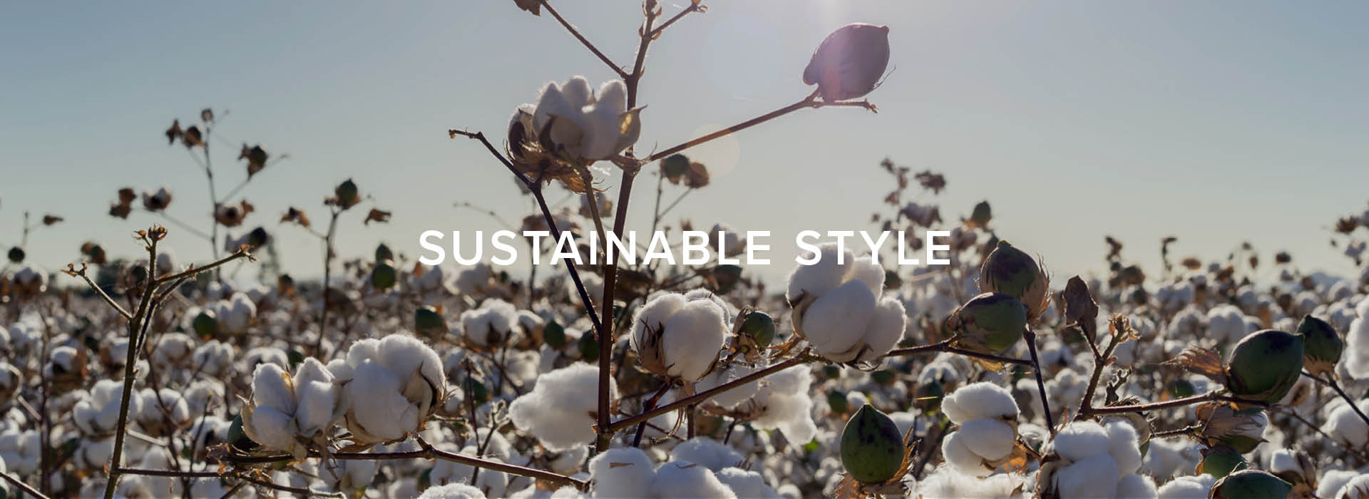 Build a sustainable wardrobe with cotton | Rodd & Gunn